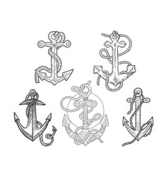anchor and rope set line art sketch vector image