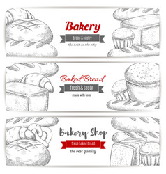 bakery bread and pastry shop sketch banner set vector image
