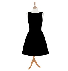 Black dress vector image vector image
