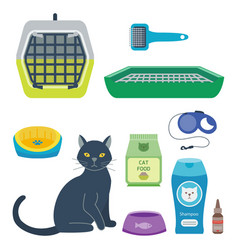 Colorful cat accessory cute animal icons vector