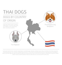 Dogs by country of origin thai dog breeds vector