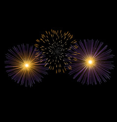 Fireworks on black background vector