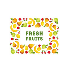 fresh fruits banner template square frame design vector image