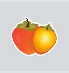 fresh juicy persimmon sticker tasty ripe fruit vector image