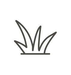 Grass icon outline plant line grass symbo vector