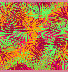 palm tree branches vector image