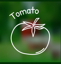 thin line tomato icon vector image