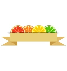 Citrus slices with paper banner vector image vector image