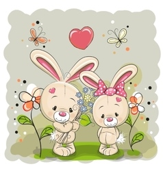 Rabbit boy and girl vector image