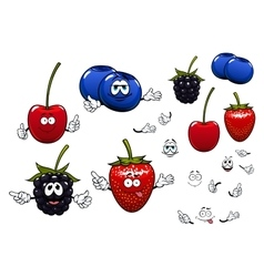 Strawberry blackberry cherry blueberry fruits vector image vector image
