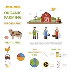 Agriculture farming organic food infographic vector image