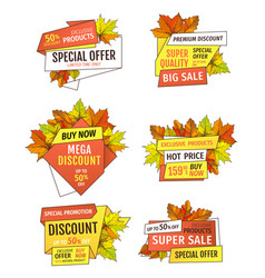 best choice promotion discount on thanksgiving day vector image