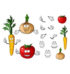 Carrot tomato and onion vegetables vector
