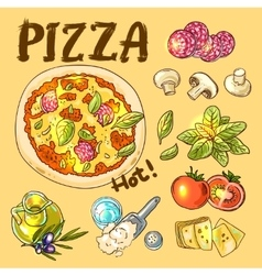 Pizza hot cooking vector