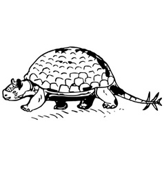 Prehistorical turtle vector