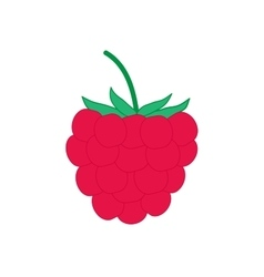 Sign flat raspberry 4007 vector image