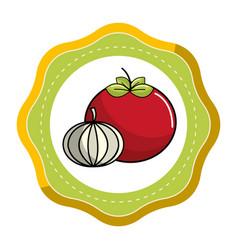 Sticker tomato and garlic vegetable icon vector