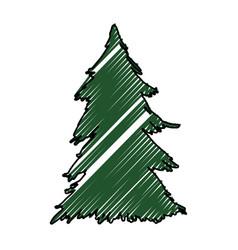 tree pine christmas vector image