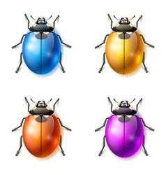 Set of multicolored fictional beetles vector image vector image