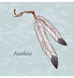 colorful of feathers vector image vector image