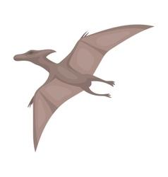 Dinosaur Pterodactyloidea icon in cartoon style vector image