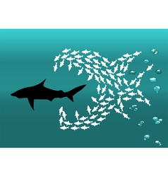 flock of small fish and shark vector image