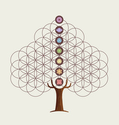 Flower of life concept tree with yoga chakras vector