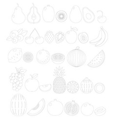 Fruit line icon set isolated vector