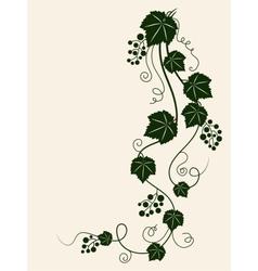 Grape vine silhouette vector