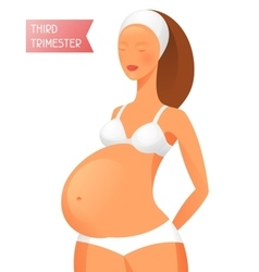 Pregnant women in third trimester pregnancy vector