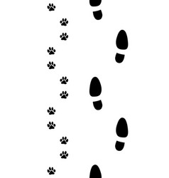 Shoes and dog paws vector