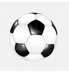 Soccer ball isolated transparent background vector