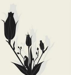 rose illustration vector image