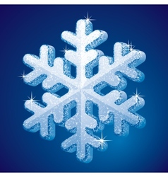 Frosted snowflake vector image