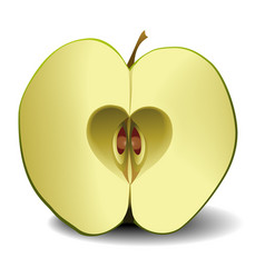 Apple fruit heart vector
