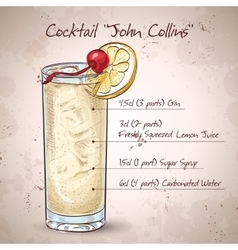 Cocktail John Collins vector