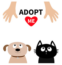 human hand adopt me dont buy dog cat pet adoption vector image