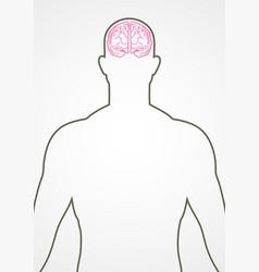 human internal organ vector image