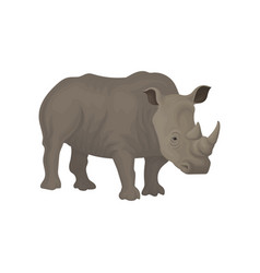 Rhinoceros wild african animal vector