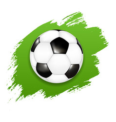 soccer ball with green blot vector image