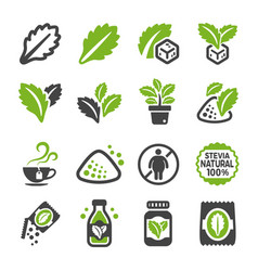 Stevia icon set vector