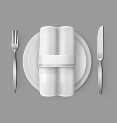 Two white cloth napkins on vector