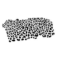 Background of leopard skin pattern vector