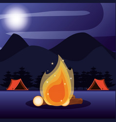 Camping zone with tents and nightscape vector