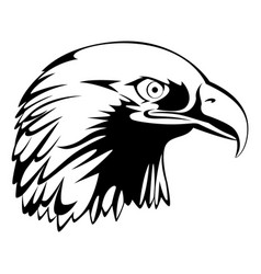 eagle head mascot vector image