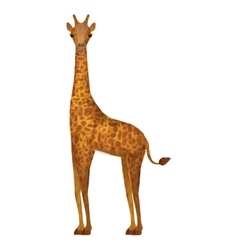 Giraffe animal icon vector