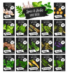 Herbs natural spices seasonings farm market price vector