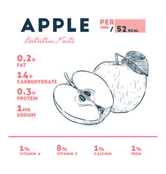 Nutrition facts of apple hand draw sketch vector