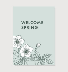 spring greeting card invitation floral vector image