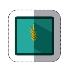 Sticker colorful square with wheat branch vector